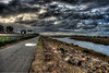 San Diego River Trail_7232_hdr