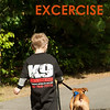 dog walking and excercise