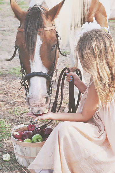 Galveston Texas Mini session with a Horse