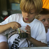 West Wind Cub Scout Day Camp, at the Paul Center in Chelmsford. Nathaniel Mackwell, 7, of Billerica, plants a marigold seed at the Nature activity. At right is Nicholas Carlisle, 7, of Tewksbury. (SUN/Julia Malakie)