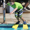 West Wind Cub Scout Day Camp, at the Paul Center in Chelmsford. Sean McNulty, 8, of Chelmsford, jumps into the pool. (SUN/Julia Malakie)