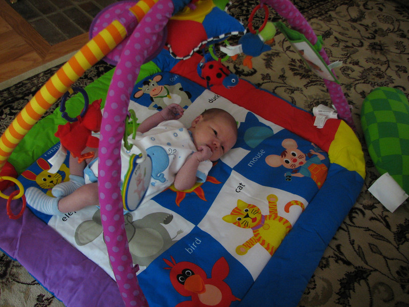 Playing in the baby gym