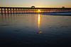 20111006_FollyBeach_003-1760557166-O