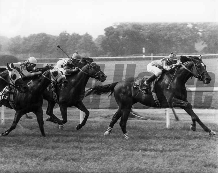 Theatrical winning the 1987 Bowling Green Handicap at Belmont Park.<br /> Photo by: Bob Coglianese