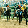 Sunday Silence prevails over Easy Goer to win the 1989 Kentucky Derby at Churchill Downs. Photo by: Skip DIckstein