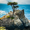 The Lone Cypress, Cypress Point