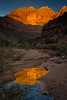Sunrise Near the Pine Creek Bridge - Zion National Park, Utah - Andrew Ehrlich - November 2013