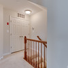 42185 Canary Grass Square