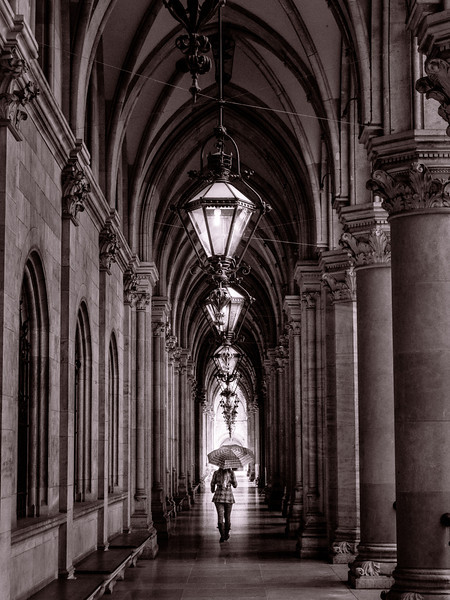 Image of Vienna by Jared Platt