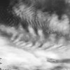 Cirrocumulus in black and white-1853