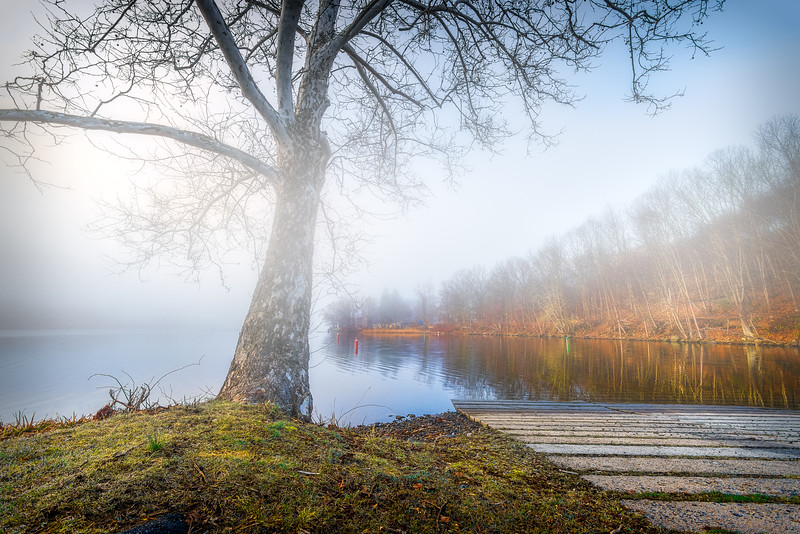 Foggy morning at Indian Well State Park in Shelton, Connecticut, USA.