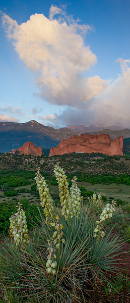"""From Earth to Sky at Garden of the Gods""<br /> <br /> Last summer I took my buddy Andy Baird for his first experience at Garden of the Gods in Colorado Springs, Colorado. We had some fabulous clouds after sunrise. Not to mention yucca in bloom for the foreground of this pano."
