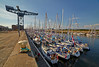Commonwealth Flotilla at James Watt Dock Marina - 25 July 2014
