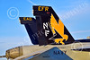 Boeing F-18E-USN 00227 Close up tail of a Boeing F-18E Super Hornet USN 166859 VFA-115 EAGLES commanding officer's airplane USS George Washington NF code at NAS Fallon 2-2015 military airplane picture by Peter J Mancus