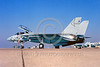 F-14USN-VF-301 0001 A static Grumman F-14 Tomcat USN jet fighter VF-301 DEVIL'S DISCIPLES NAS Miramar military airplane picture by Peter J Mancus