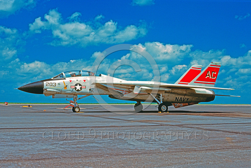 F-14USN-VF-31 0001 A static Grumman F-14 Tomcat USN jet fighter VF-31 TOMCATTERS 8-1981 military airplane picture by Charles E Stewart