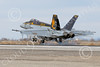 Boeing F-18E-USN 00225 A Boeing F-18E Super Hornet USN 166859 VFA-115 EAGLES commanding officer's airplane USS George Washington NF code lands at NAS Fallon 2-2015 military airplane picture by Peter J Mancus