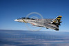 F-14USN-VF-84 0010 Grumman F-14 Tomcat USN VF-84 THE JOLLY ROGERS 1-1981 military airplane picture by Robert L Lawson