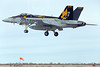 Boeing F-18E-USN 00190 A Boeing F-18E Super Hornet USN 166859 VFA-115 EAGLES commanding officer's airplane USS George Washington NF code lands at NAS Fallon 2-2015 military airplane picture by Peter J Mancus