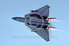 AB-F14USN 00013 A Grumman F-14 Tomcat USN jet fighter in burner with swept wings military airplane picture by Peter J Mancus