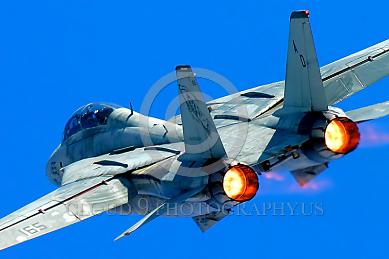 F-14USN-VF-101 0012 A tight crop picture of a Grumman F-14 Tomcat USN jet fighter flying in afterburner military airplane picture by Peter J Mancus