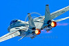 F-14USN-VF-101 00004 A Grumman F-14 Tomcat USN jet fighter VF-101 GRIM REAPERS in burner 2004 military airplane picture by Peter J Mancus