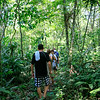 Tourists walking in forest - Peru