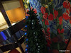 Stairwell Deck 9 - 8 Reception Christmas Tree hides mural 16-11-2012 23-30-40