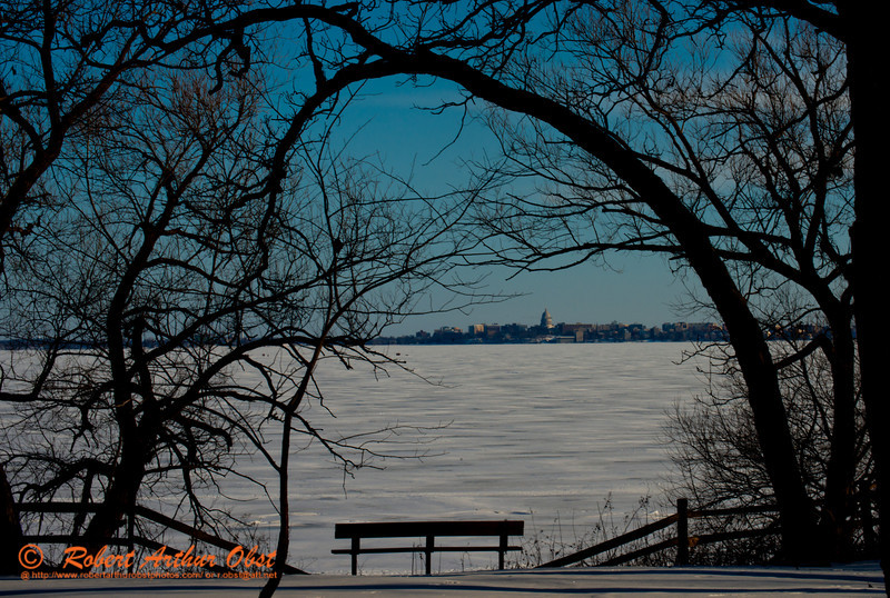 Cross country skier's and snowshoer's and ice fisherperson's view of oak trees framing Lake Mendota and the state of Wisconsin Capitol of Madison within Governor Nelson State Park (USA WI Waunakee; Obst FAV Photos 2013 Nikon D800 Destinations Wild Scenic State and Provincial Park Image 7772)
