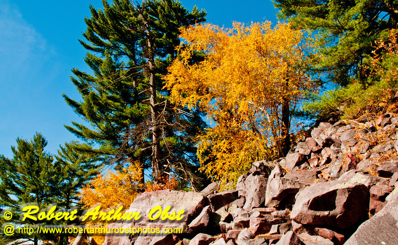 Blue skies over and blazing autumn colors along Ice Age National Scenic and Balanced Rock Trails within southeastern Devils Lake State Park (USA WI Baraboo; RAO 2012 Nikon D300s Image 4230)