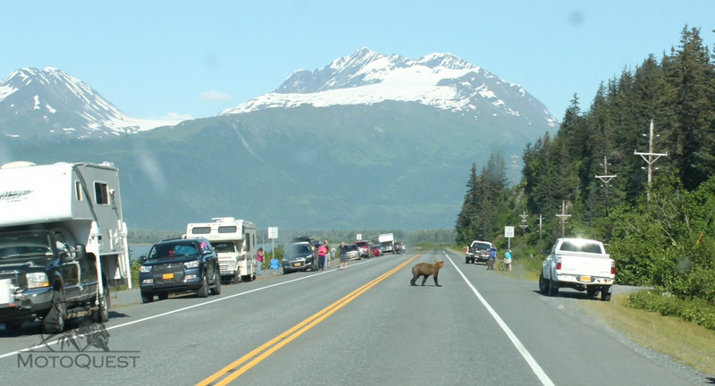 "<a href=""https://www.motoquest.com/guided-motorcycle-tour.php?alaska-all-womens-tour-15"">https://www.motoquest.com/guided-motorcycle-tour.php?alaska-all-womens-tour-15</a>"