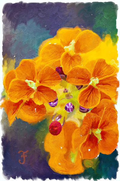 """Wallflower At the Party (Painting)""<br /> <br /> Painting of a western wallflower (Erysimum capitatum var. capitatum). Photoshop's mixer brushes and a Wacom tablet were used. The original photo of the wildflower was taken in the Mt. Evans Wilderness Area, Colorado, USA."