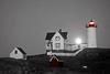 Buzzed ME Nubble Moonrise BW Spot Color