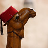 Camel wearing a fez inside the Morocco Pavilion