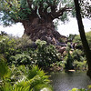The centerpiece and icon of Disney's Animal Kingdom Park is the Tree of Life.