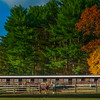 """A Brisk Autumn Day at Fairlawn Farm"""