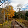 Aong the Tracks - 2