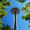 The Space Needle at the Seattle Center on a beautiful, blue sky day.  It's always sunny in Seattle!