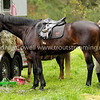 131026 Woodbrook Hunt Club Snapshot Gallery