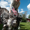 20130804_Farm_Sanctuary_Hoe_Down_8371