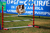 Dogs On Course in North America National Championships<br /> <br /> Honey