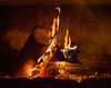 Fire_Greasewood flats 9180