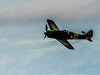 Focke-Wulf Fw-190 A-5 in flight during the Luftwaffe Fly Day at Paine Field Everett, WA.