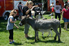 Ribfest - 2014 - Naperville, Illinois - Sponsored by the Exchange Club of Naperville - Family Area - Miller's Petting Zoo