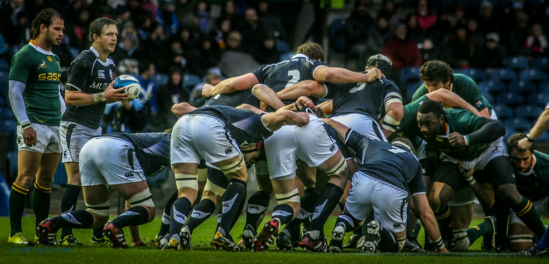 Scotland v South Africa - Autumn Test Series, Murrayfield, Edinburgh 2010