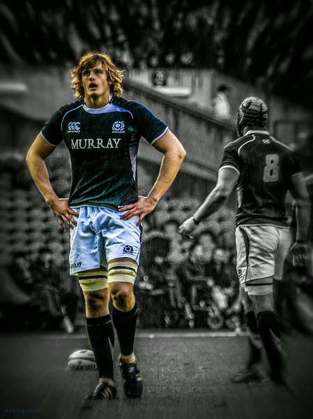 Scotland Rugby: Ritchie Gray