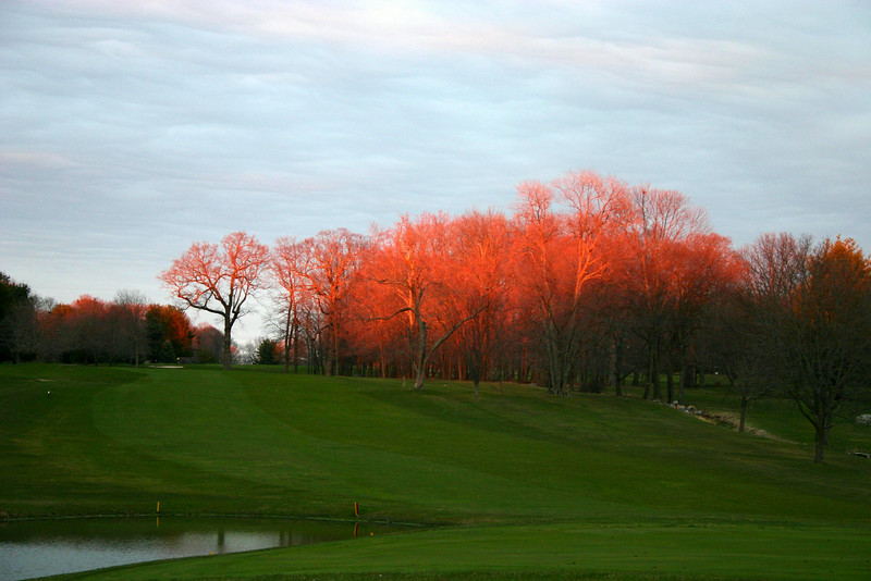 evening sunset over treetops on 18th fairway at WCC