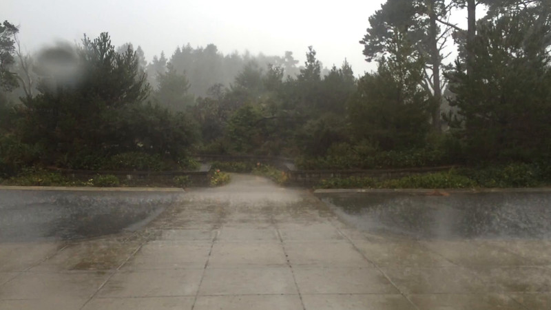 The worst storm in five years hit on our fourth day.  Most guys played.  I bailed out.