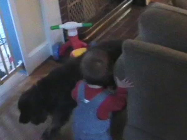 2003-3-11 - Ian chasing Chewie, playing with rattle toy, rocking to music