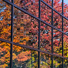 Window reflection of Fall colors